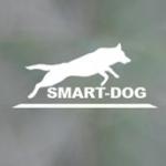 Центр дрессировки собак \